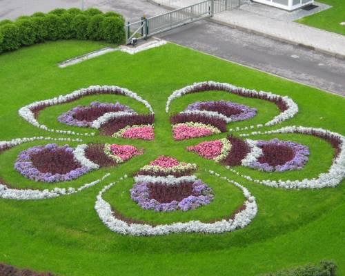 Необычные клумбы цветы