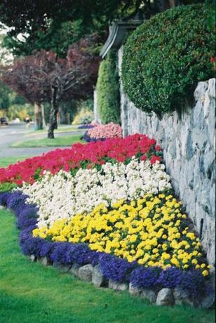 Красивые цветники дизайн цветников