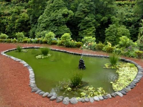 Сад и огород ганичкина сад огород