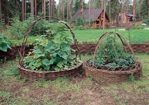 Оформление сада и огорода