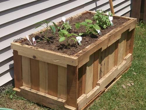Сад огород харьков сад и огород