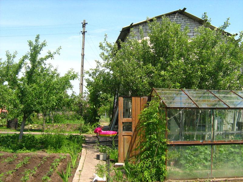 Дача сад огород сайт о строительстве