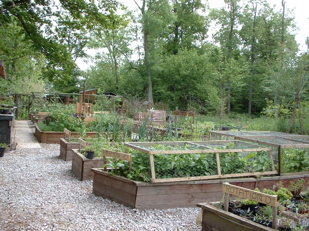 Сады и огороды своими руками фото 2014 г